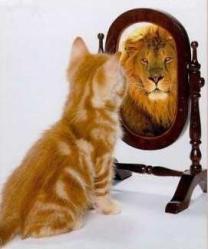 Resultado de imagem para olhar para sí próprio